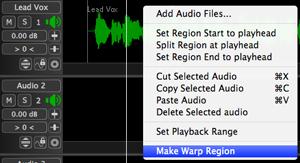 Revoice Pro 3 Make Warp Region